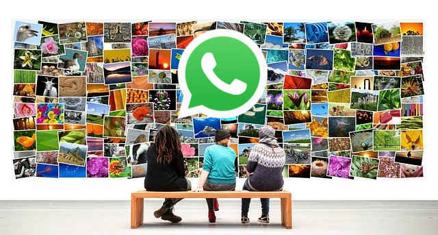 Foto whatsapp in galleria